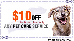 Coupon at Happy Pets