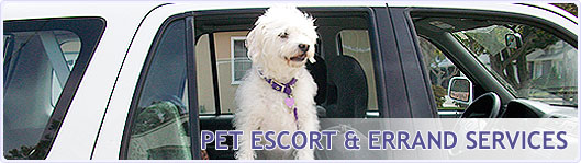 Pet escort and errand services at Happy Pets